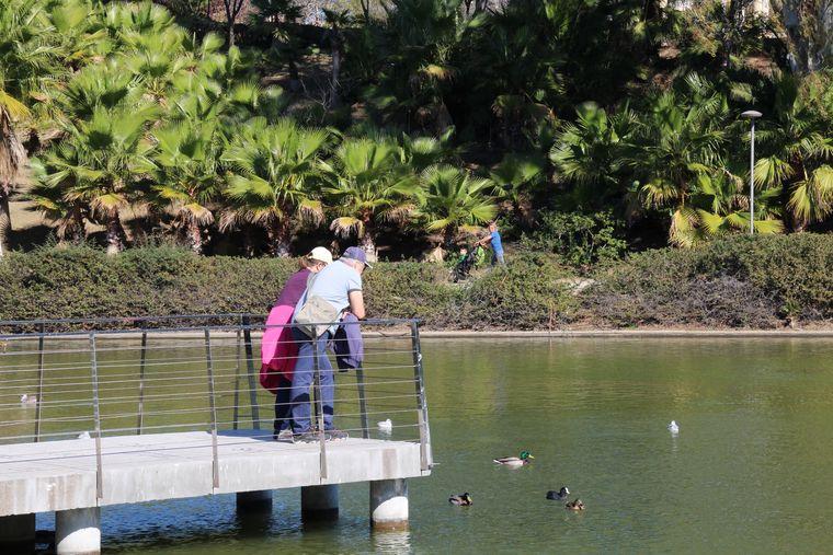 Dando de comer a los peces en Parque de la Paloma, Benalmádena