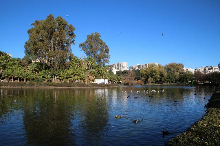El lago en Parque de la Paloma
