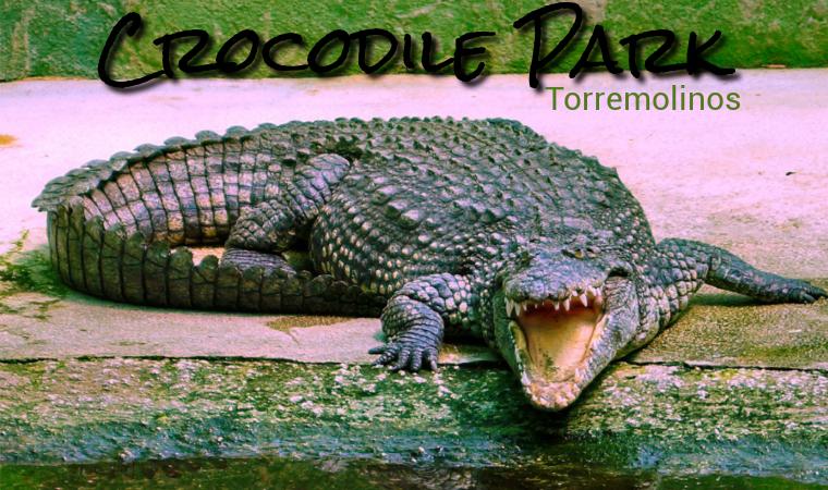 Crocodile Park en Torremolinos
