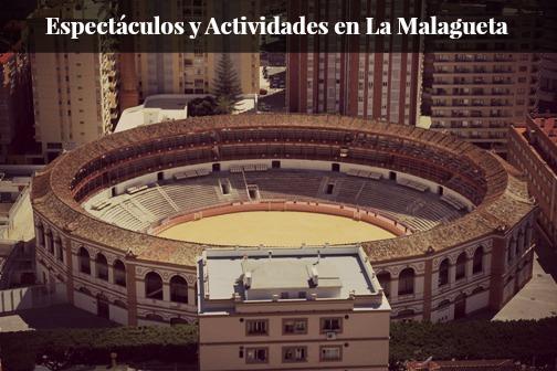 Espectaculos y Actividades en La Malagueta