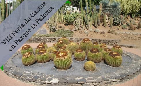 Feria de Cactus en Parque la Paloma