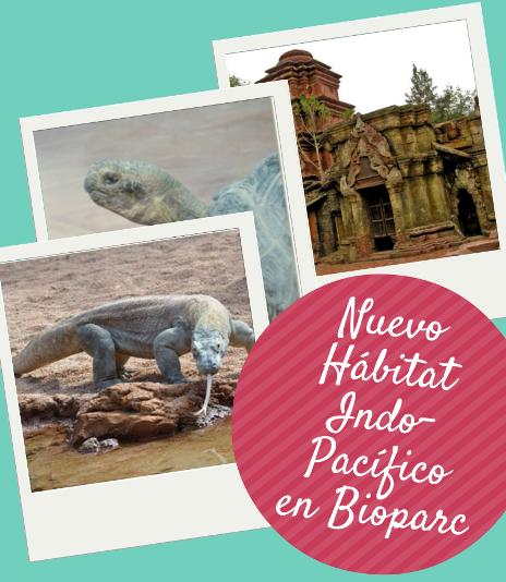 Nuevo Habitat Indo-Pacifico en Bioparc Fuengirola