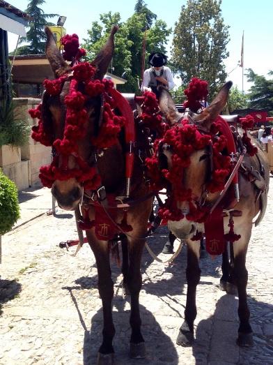Caballos en la Feria Ronda Romántica