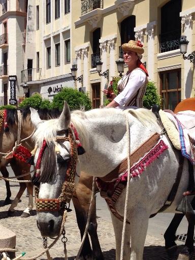 Mujer montada en caballo en Ronda Romántica