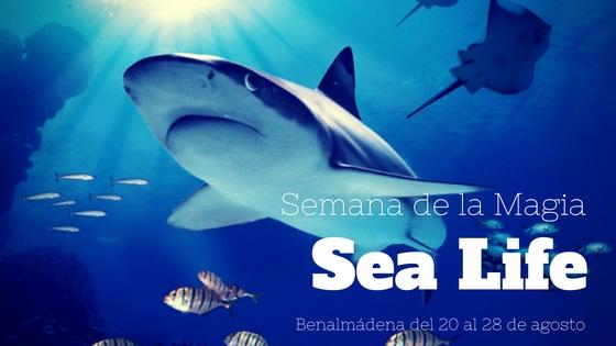 Semana de la Magia en Sea Life Benalmadena