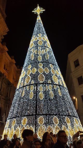 Árbol de Navidad en Plaza de la Constitución